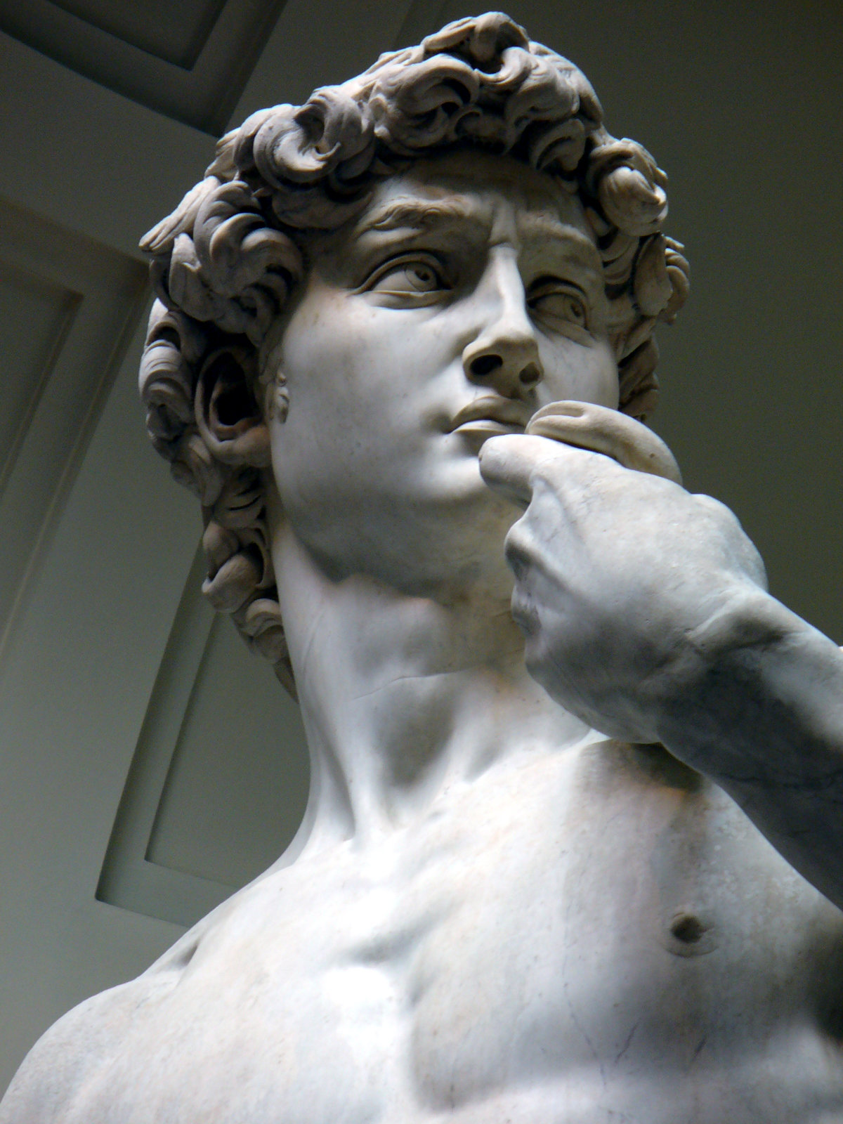 statues of david David vs goliath, generated by the author using scanview shown by permission of the digital michelangelo project everyone has seen photos of michelangelo's david, but unfortunately the sculpture is invariably shown from the side view, rather than from the front.