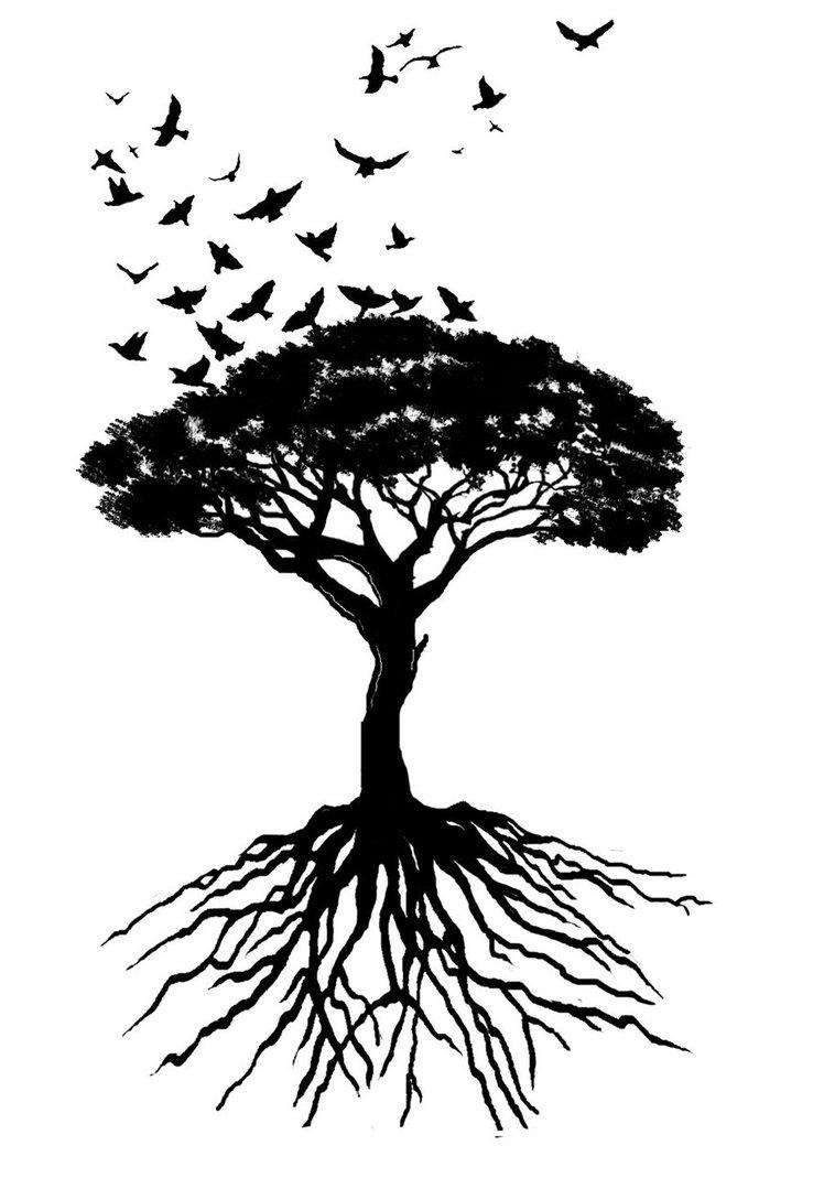 tree of life la cuadra